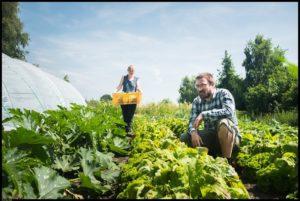Velt studiedag Permacultuur @ Het BEL, Terrein Tour & Taxis